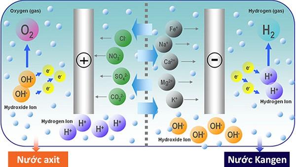 Quá trình điện phân